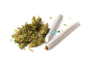 🌿Weed🌿 May Be Worse Than Cigarettes for Sperm Health